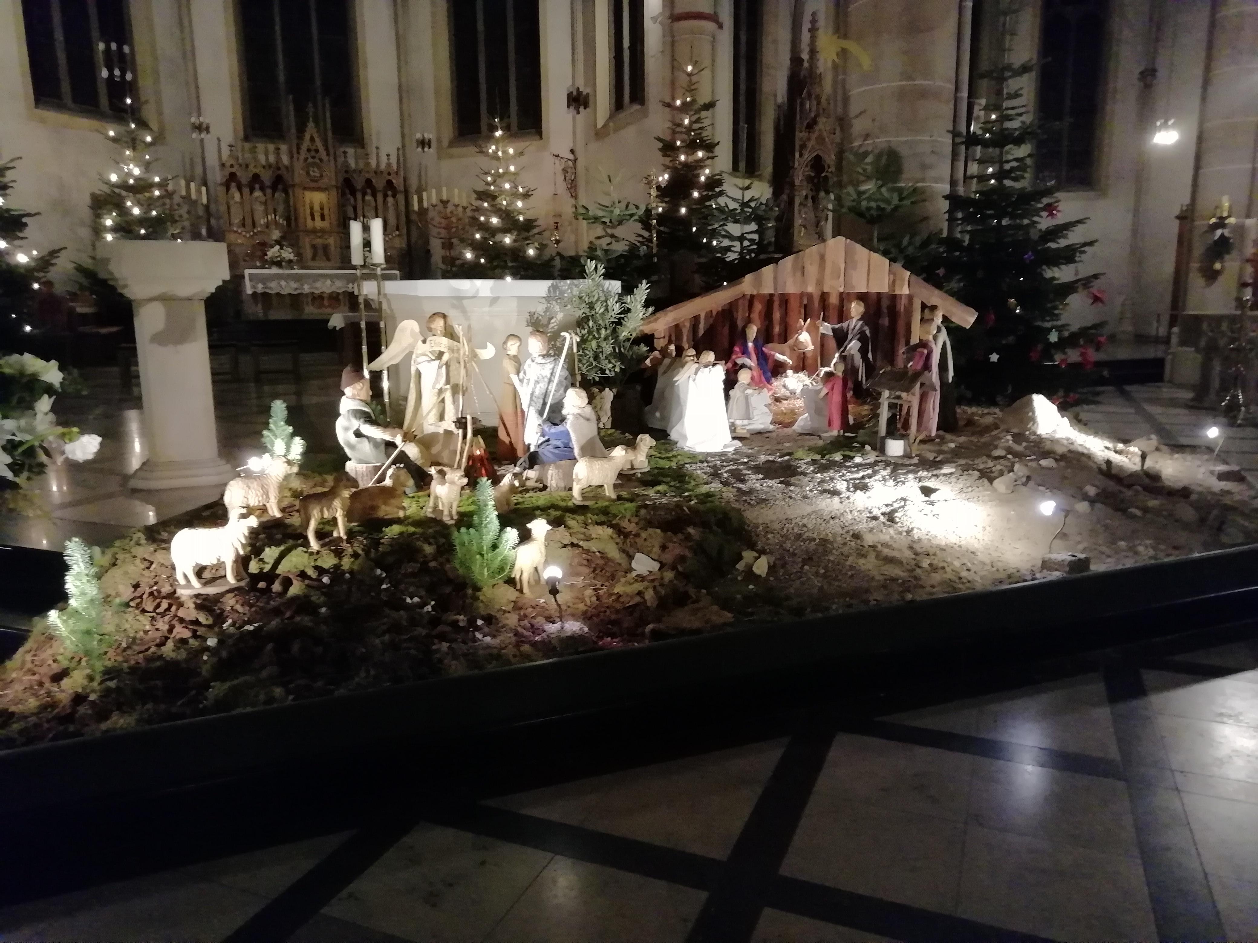 Rohschnitt – Krippe St. Marien 2019